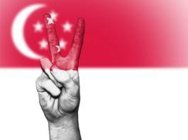 新加坡国旗法